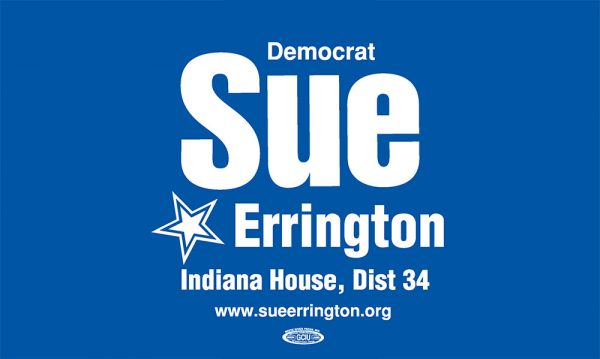 Sue Errington for State Representative